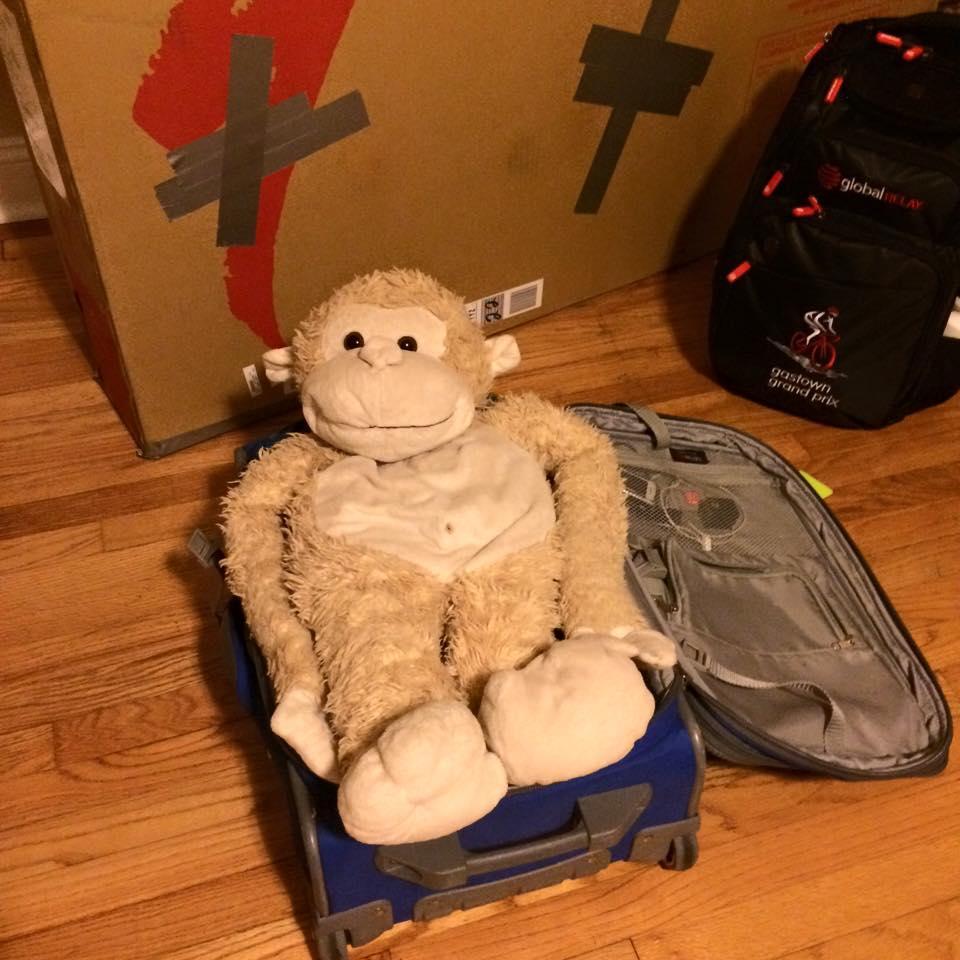 Ce que j'apporte en voyage : mon bécik, et mon buddy-monkey. Haha